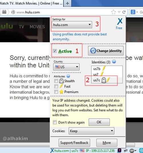 proxy untuk website tertentu